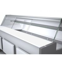 Plexi-Schiebetür Profi100 gebogenes Frontglas